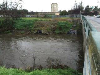 Guadalupe River at Alma/Lelong, San Jose CA 8 Feb 2015