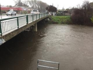 Guadalupe River at Alma/Lelong - with Paul, San Jose CA 8 Jan 2017