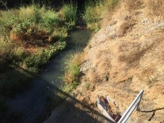Guadalupe River at Alma/Lelong, San Jose CA 29 Sep 2016