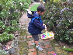 Egg hunt - Easter, April 2017 IMG_9903