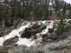 Sierras waterfall, Carson River West Fork, IMG_1334