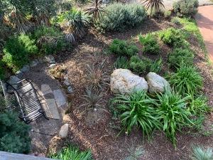 Willow Glen Garden, San Jose, California 4 Feb 2020
