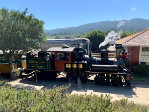 Roaring Camp and Big Trees railroad, Felton 3 July 2020
